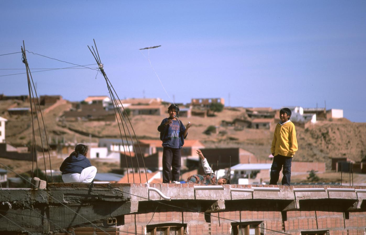 lama-glama-9-bolivia-2001