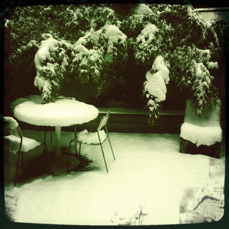 carpet-of-snow-antwerpen-2010